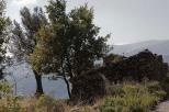 Gagliato_2101