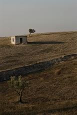 Gagliato_2303